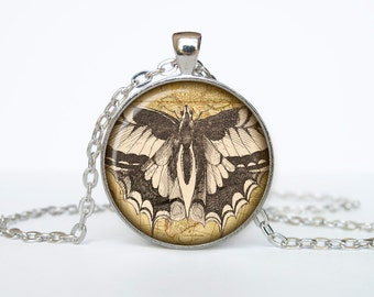 Butterfly necklace Insect necklace bug pendant Victorian England jewelry beige black brown