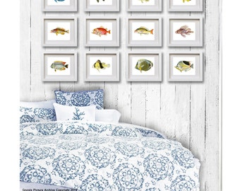 """Tropical Fish Art prints set of 12 coral reef fish colorful antique fish art print 8x10"""" Beach wall art Ocean Art Gnosis Picture Archive"""