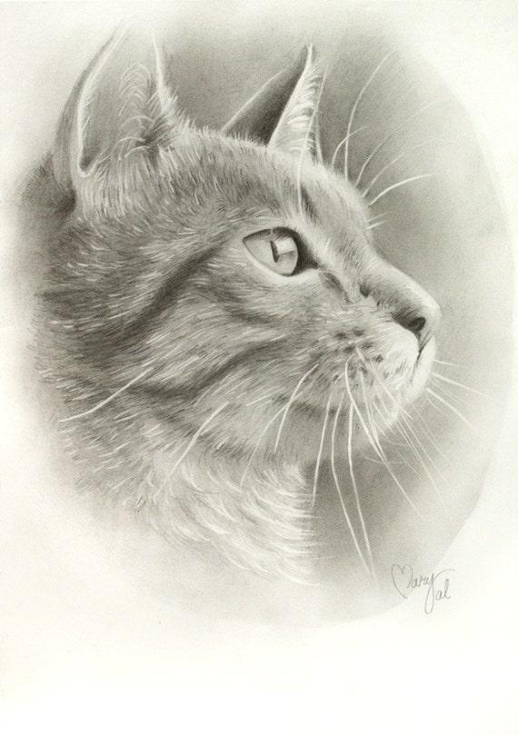 Original drawing of a cat portrait on paper perfect as an art - Gatto disegno modello di gatto ...