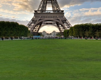 Eiffel Tower Lawn Photography Backdrop