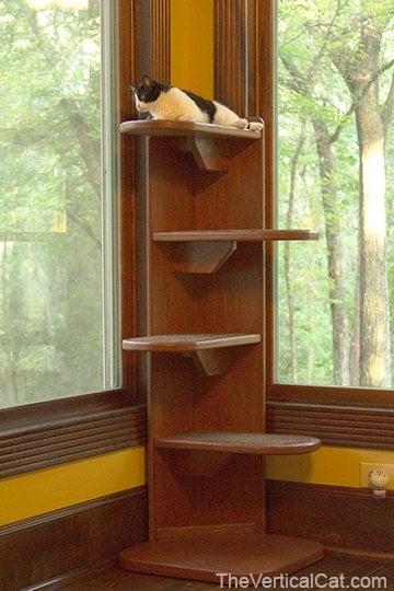 5 Ft Alexa Corner Cat Tree From The Vertical Cat
