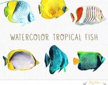 Watercolor Fish Clip Art, Beach Clip Art, Summer Clip Art, Tropical Clip Art, Scrapbooking Clip Art, Watercolor Clip Art, Instant Download