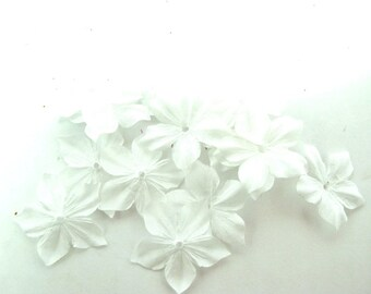 Shaped flowers of clear ivory silk ponge 10 size 35 mm
