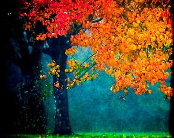 Colorful Landscape, Nature Photography, Fall Foliage, Autumn Decor, Fog Photography, Orange, Blue, Green, Tree, Fine Art Photography