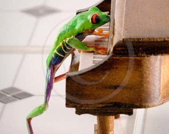 Frog at the Piano, Music Art, Piano Art, Miniature Piano, Tree Frog Photo
