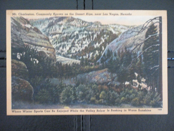 Mt. Charleston, Vintage Postcard
