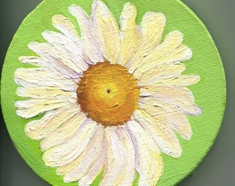 Shasta Daisy Painting acrylics on Canvas, White Daisy  Lime Green Round original flower art, 5 inches, acrylic painting canvas art