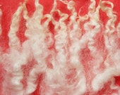 Curls! Lovely Creamy White Wool Locks. Washed, 2 oz, Perfect for spinning, felting, Doll hair and Santa beards