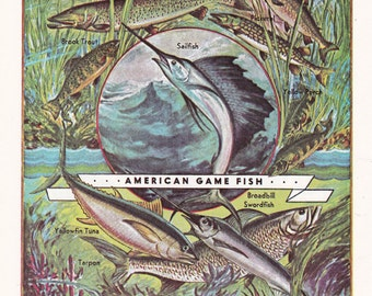 vintage fish print, 'American Game Fish', illustration by Albert Henry Winkler, printable digital image no. 1466