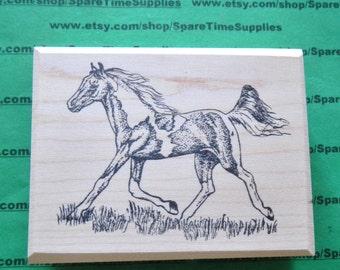 """SUT - H928DA   #2 PInto Pony - 3"""" tall x 3.75"""" wide - 1 pc"""