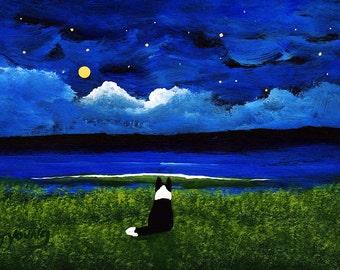 Border Collie Dog Outsider Folk Art Print Todd Young MOON AND STARS