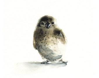 bird painting, bird watercolor, watercolor print, bird- Tiny - bird art, nature, watercolor painting, print