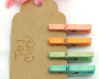 Rainbow Hand Dyed Mini Clothespins - Set of 4