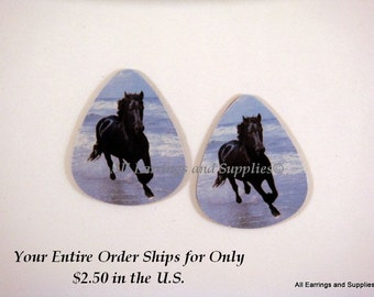 2 Black Stallion Guitar Pick Single Sided - Stallion in the Surf - 2 pc - 6041 - Buy 5 designs, get 1 Free