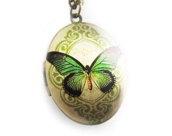 Green Butterfly Filigree Locket Necklace - Brass Photo Oval Locket  (R3B)