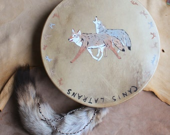 """15"""" fifteen inch diameter deerskin drum painted with coyotes and decorated beater both with coyote tails shaman ritual pagan dance"""