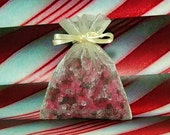 Peppermint Aroma Bead Sachets (Set of 2)  GREAT In THE CAR Air Fresheners