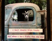 Custom Listing for Amy Truck Driver Goat Photo,with Funny Caption ,4x4 Wood Panel