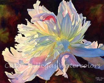 white peony art watercolor painting print by Cathy Hillegas, 12x16, June Light, pink, yellow, blue, purple