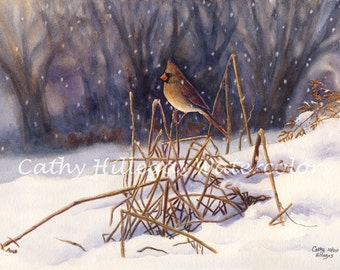 Cardinal Art Watercolor Painting Print by Cathy Hillegas, 8x10, bird painting, snow art, gold brown red, blue purple white, female cardinal