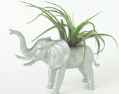 Elephant Planter with Air Plant Room Decor, College Dorm Ornament, Plants and Edibles, Silver