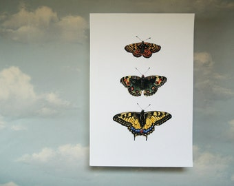 Three Butterflies Original Art Reproduction Print