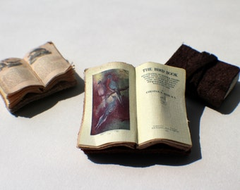 Miniature Open Book --- Bird Book