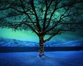 Large Size Wall Art British Columbia Okanagan Lake Photography Peachland BC Jewel Tone Blue Green 24x36 PRINT - Northern Festivities