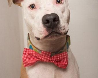 Doggie Bow Tie - Red Polkadot