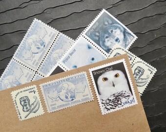 North Pole .. Arctic Animals .. UNused Vintage Postage Stamps  .. post 5 letters
