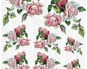 Instant Digital Download Cottage Cabbage Pink Roses Red Roses Vintage Era Transparent Background PNG - U Print ECS