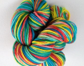 GARDEN PARTY - Superwash Merino Wool - worsted