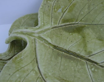 A Pair of Leaf Plates
