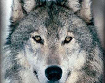 Werewolf  Incense 25 sticks with crystals