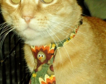 Morris Thanksgiving Turkey Neck Tie For Cats or Small Dog