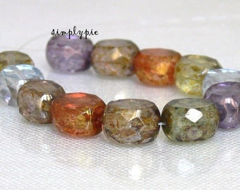 Mix Lumi Faceted Coin Czech Glass Beads 10mm 12 Fire-Polished Beads