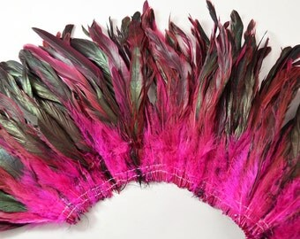 """25-30pcs Rooster Tail Feathers-Hot Pink, 6-8"""" tall"""
