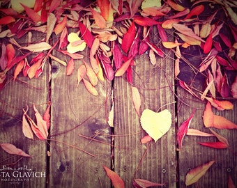 Leaf Love Photograph, Autumn Art, Fall Home Decor, Colorful Leaves Photography, Heart Photo