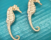 Drawer Pulls Knobs Seahorse Nautical Beach House Set of 2 White
