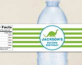 Dinosaur Party - 100% waterproof personalized water bottle labels