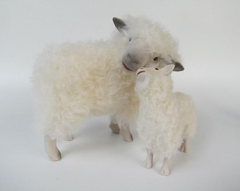 Cotswold Ewe Cheek to Cheek with Large Lamb Looking Up
