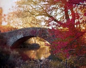A Song of Red for Central Park Photography- NYC Art, New York Print, Rustic Fall Decor, Orange, Dark Red, Brown,