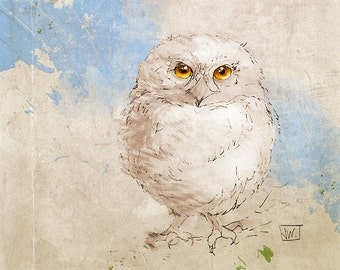 Baby Horned Owl. Owlet. Owl. Mixed Media Fine Art Print from my Original Drawing