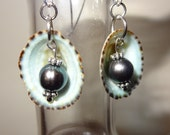 Green to purple freshwater pearls, Green to turquoise limpet shell earrings, Limpet shell Earrings, Pearl and Limpet shell earrings