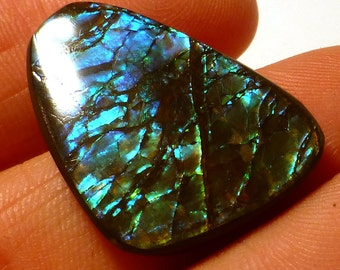Ammolite Cabochon Stabilized Vibrant Blue Green Designer Hand Cut Korite Ammonite Alberta Canadian Precious Gemstone Pendant Rare Opalized