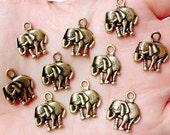 Elephant Charms (10pcs) (13mm x 16mm / Antique Gold) Animal Charms Metal Findings Pendant Bracelet Earrings Zipper Pulls Keychain CHM661