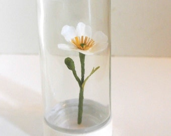 Small white Japanese anemone paper flower sculpture in jar handmade botanical specimen