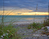 Beach Photography, Blue Green Ocean Wall Art, Sea Oats, Ocean Sunset, Florida Beach, Seashore Photo Home Decor, Blue and Yellow Fine Art