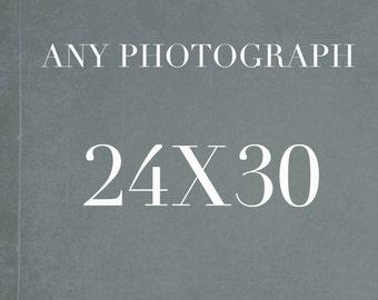 24x30 Photograph, Large Wall Art, Still Life, Fine Art Photography