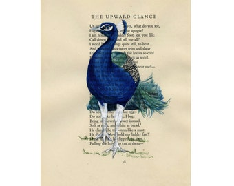 Peacock - The Upward Glance -  Original Watercolor Painting on Antique Book page - 6 1/2x8inches
